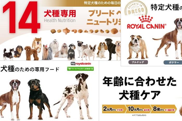ロイヤルカナン犬用